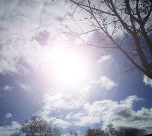 Sonne in der Windschutzscheibe