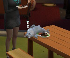 Sims4(1)