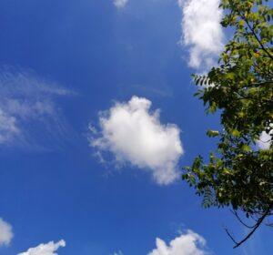blauer-himmel-mit-ast-und-wolken