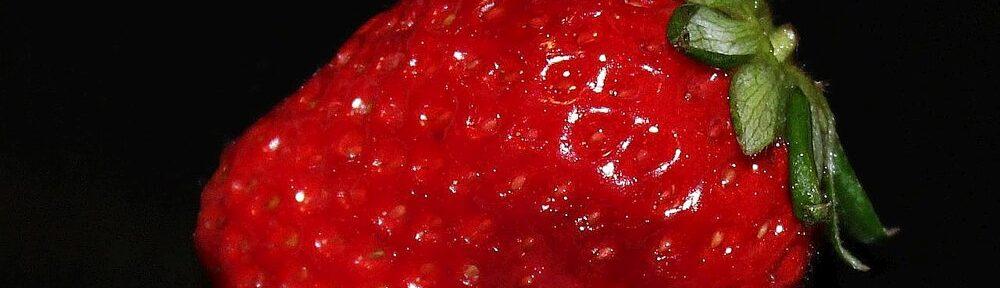Nur eine weitere Erdbeere ...