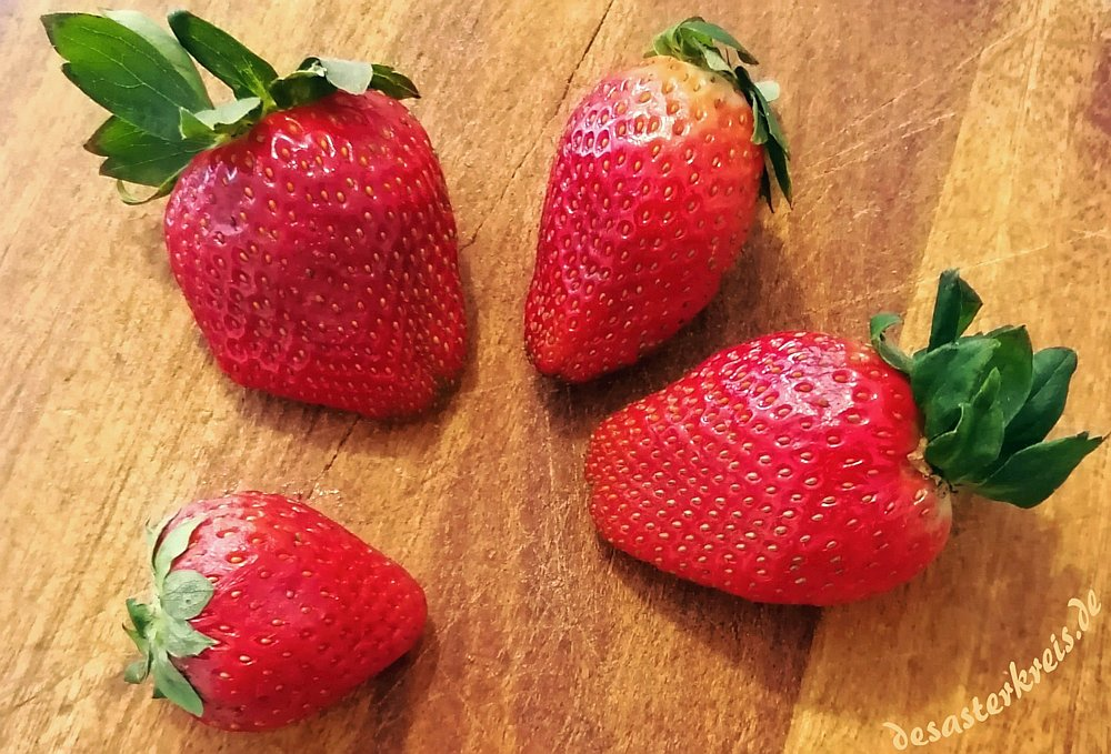 Frühling & Erdbeeren
